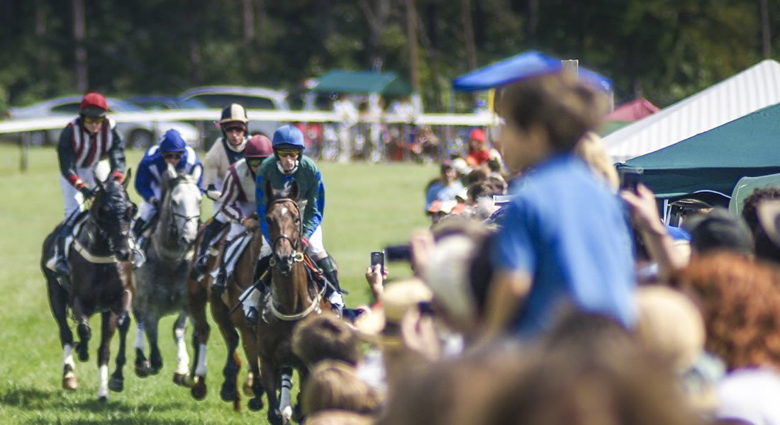 Foxfield Race course - Steeplechase