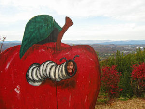 Picture taking board of a giant red apple with worm coming out of it