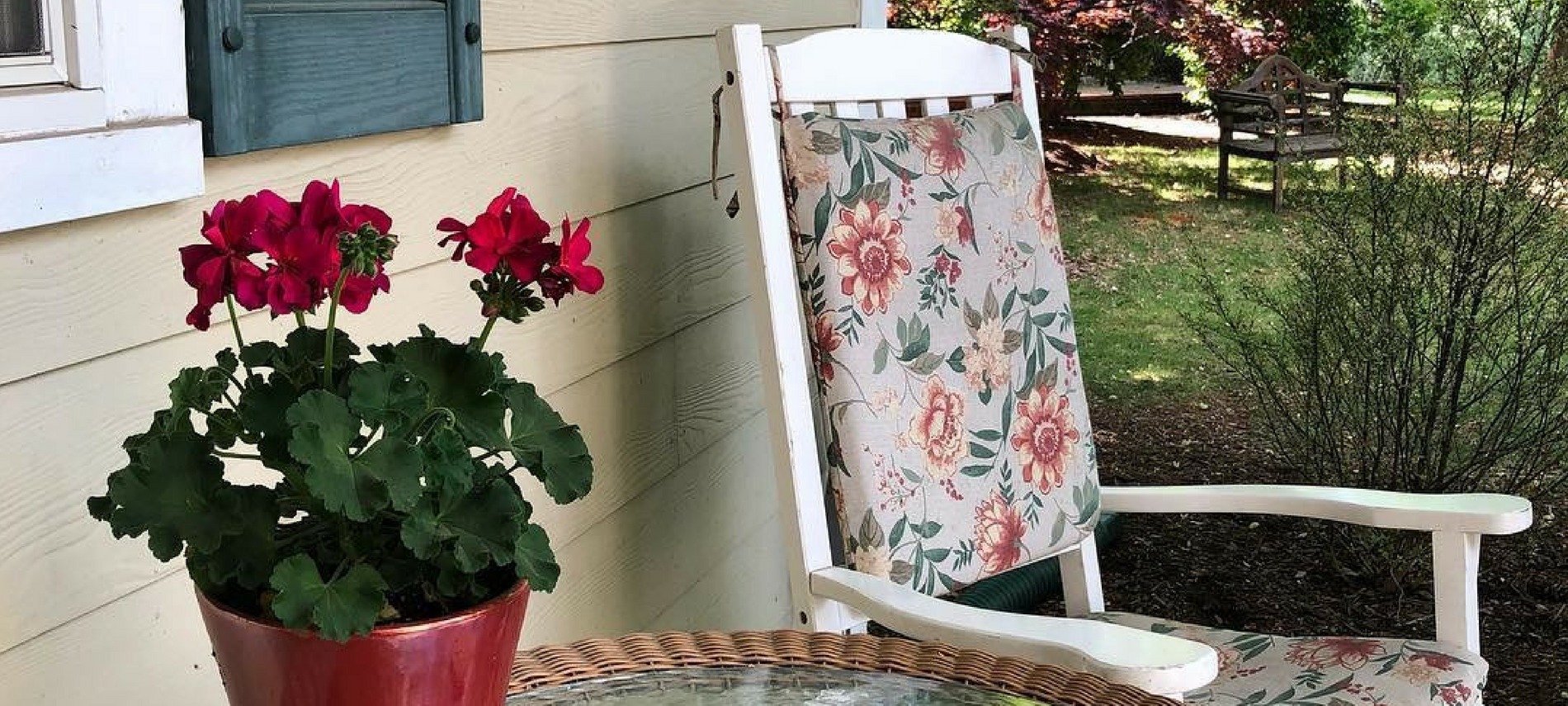 red geranium with green leaves in burgundy pot on wicker table with a white rocking chair and flowered cushions