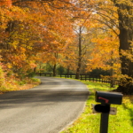 "country road with black mailbox in foreground, green grass, black ""horse farm"" fence and trees with leaves turning color"