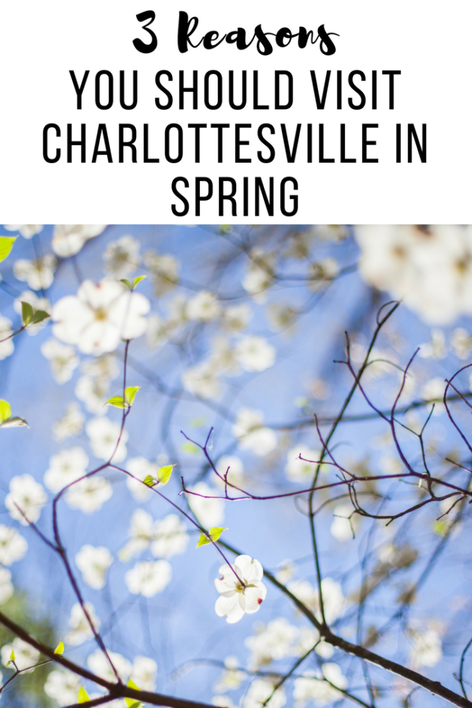 Three Reasons to visit Charlottesville in the Spring