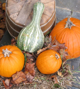 An array of pumpkins and fall squash on top of hay, leaves, and a barrel.