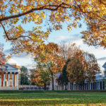 "green lawn with brick buildings and white columns, University of Virginia's ""The Lawn"", tree in foreground with gold and green leaves"