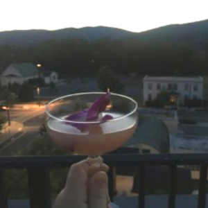 A fancy cocktail with a flower in it with the view of Crozet and mountains from The Rooftop in Crozet.