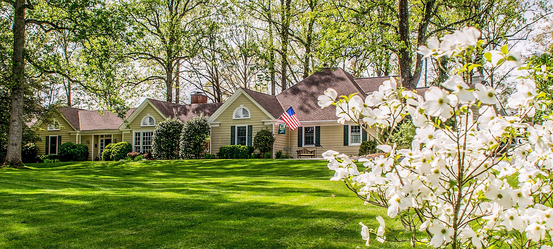 A white flowering dogwood bush in focal contract with the properties house and front lawn in the green splendor of summer being presided over by an American Flag hanging from the porch.