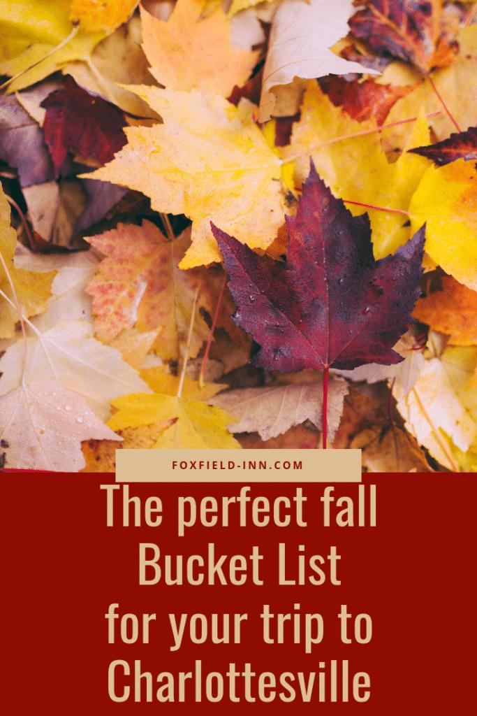 Fall Charlottesville Bucket List