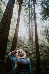 A hiker stands looking up at tall trees while holding her hat.
